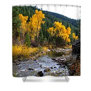 Autumn Leaves Of Red And Gold Shower Curtain