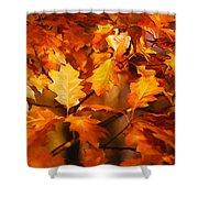 Autumn Leaves Oil Shower Curtain