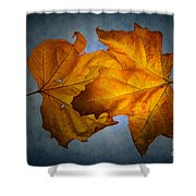 Autumn Leaves On Blue Shower Curtain
