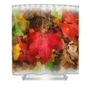 Autumn Leaves Photo Art 04 Shower Curtain