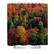Autumn Leaves Vermont Usa Shower Curtain
