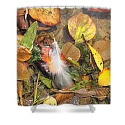 Autumn Leavings Shower Curtain