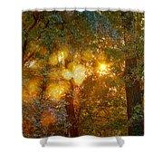 Autumn Light Symphony Shower Curtain