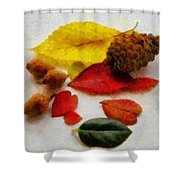 Autumn Medley Shower Curtain by Jeff Kolker