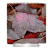 Autumn Melange Shower Curtain