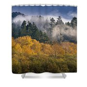 Autumn Mists Shower Curtain