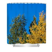Autumn Mix - Featured 3 Shower Curtain