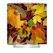 Autumn Moods 19 Shower Curtain