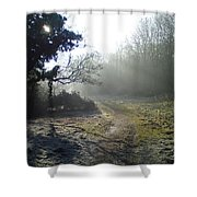 Autumn Morning 2 Shower Curtain by David Stribbling