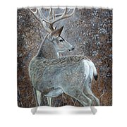 Autumn Muley Shower Curtain