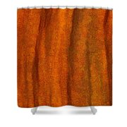 Autumn Number Three Shower Curtain
