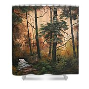 Autumn On Cannock Chase Shower Curtain