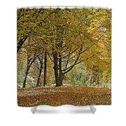 autumn on Moenchsberg in Salzburg Shower Curtain