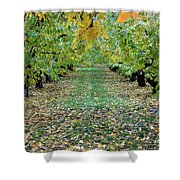 Autumn Orchard Shower Curtain