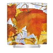 Autumn Outside My Window Shower Curtain