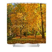 Autumn Park Shower Curtain