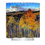 Autumn Pass Shower Curtain