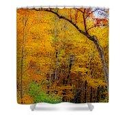 Autumn Peak Colors Shower Curtain
