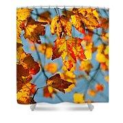 Autumn Petals Shower Curtain
