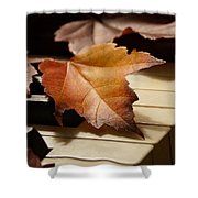 Autumn Piano 13 Shower Curtain