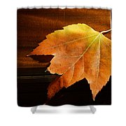Autumn Piano 15 Shower Curtain