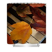 Autumn Piano 2 Shower Curtain