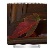 Autumn Piano 5 Shower Curtain