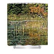 Autumn Pond Scene Shower Curtain