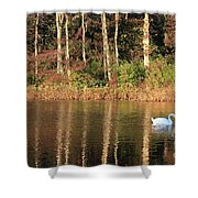 Autumn Pond Sunset With Swan Shower Curtain