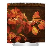 Autumn Promise Shower Curtain
