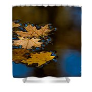 Autumn Puddle Shower Curtain
