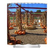 Autumn Pumpkin Patch Shower Curtain by Joann Vitali