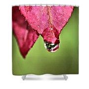 Autumn Rain Shower Curtain