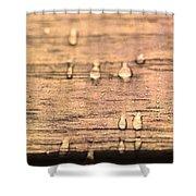 Autumn Rain On Wood Shower Curtain
