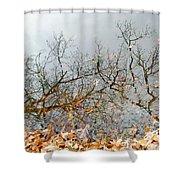 Autumn Reflections On Alloway Lake Nj Shower Curtain