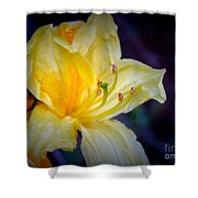 Autumn Respite Shower Curtain