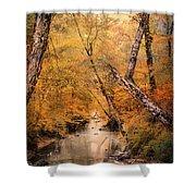 Autumn Riches 1 Shower Curtain