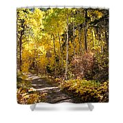 Autumn Road - Tipton Canyon - Casper Mountain - Casper Wyoming Shower Curtain