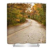 Autumn Road II Shower Curtain