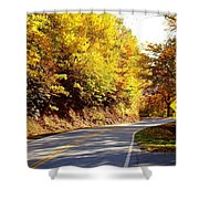 Autumn Road Shower Curtain by Mary Koval
