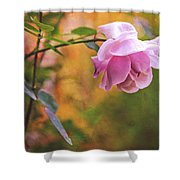 Autumn Rose Shower Curtain