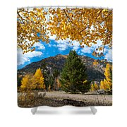 Autumn Scene Framed By Aspen Shower Curtain by Cascade Colors