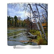 Autumn Scene Of Along The Shore Of The Platte River In Michigan Shower Curtain
