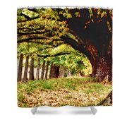 Autumn Shelter Shower Curtain