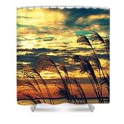 Autumn Skies Over The Ocean Shower Curtain