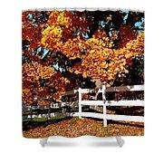 Autumn Splendor 10 Shower Curtain
