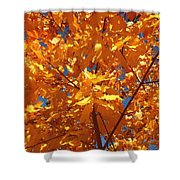Autumn Splendor 15 Shower Curtain