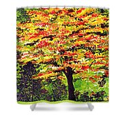 Autumn Splendor Shower Curtain by Patricia Griffin Brett