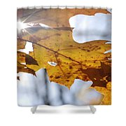 Autumn Star Shower Curtain
