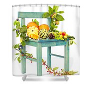 Autumn Still Life Chair Shower Curtain